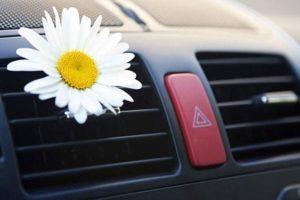 Статья Проводим профилактику автомобильного кондиционера